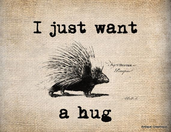 Dare2Hope_Hug a Porcupine